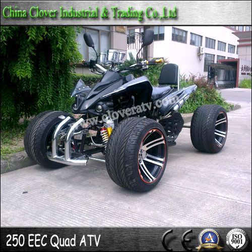 Street Bike Quad: Chinese Racing ATV 250cc Street Legal EEC ATV 250cc With 5