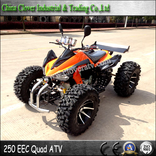 Street Bike Quad: High Quality Kawasaki EEC Standard Racing ATV 250cc Quad