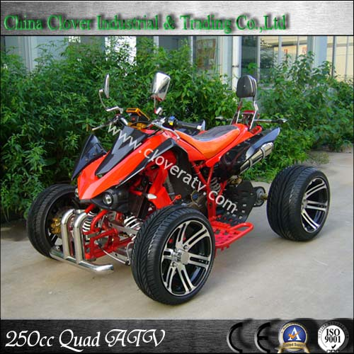 Kawasaki EEC 250CCM RACING ATV QUAD BIKE 250CC by Manual